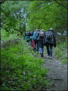 East Anglia walkers in the woods